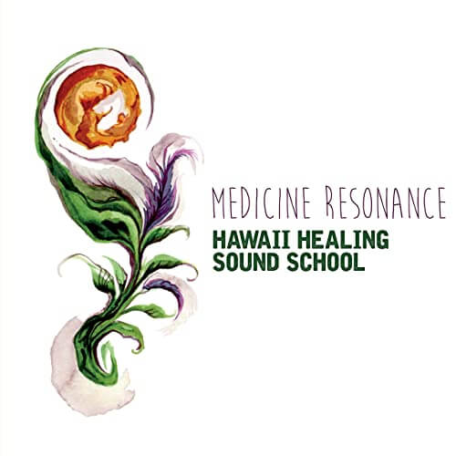 Hawaii Healing Sound School